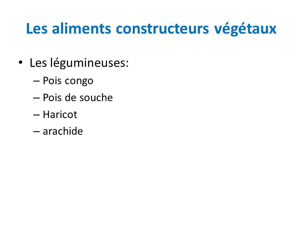 Les aliments constructeurs végétaux