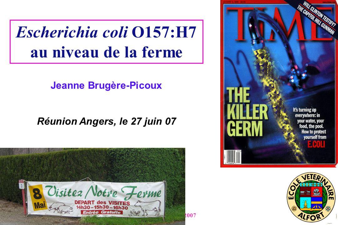 Jeanne Brugère-Picoux