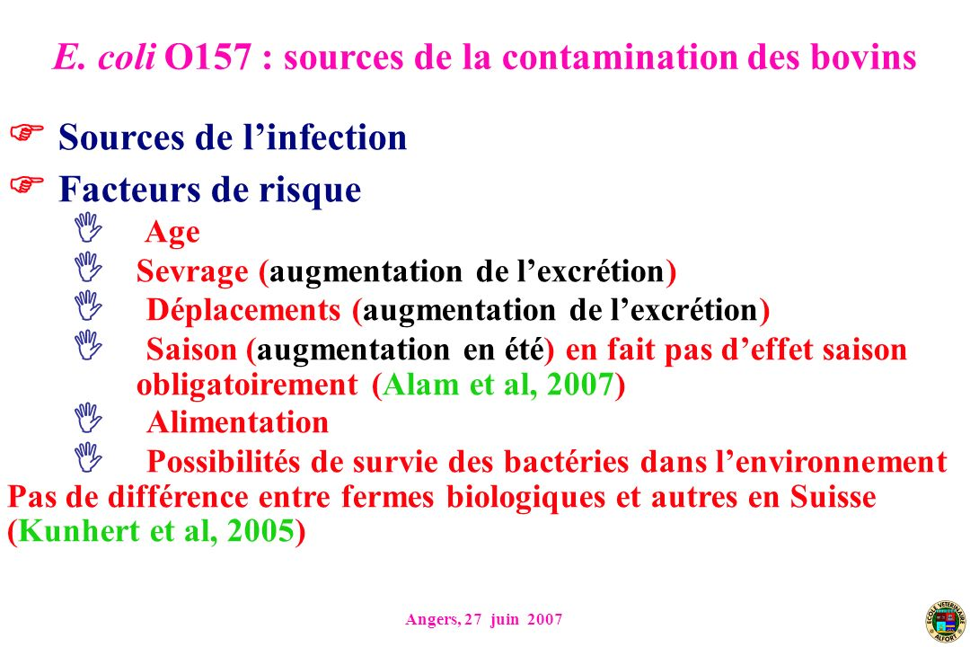 E. coli O157 : sources de la contamination des bovins