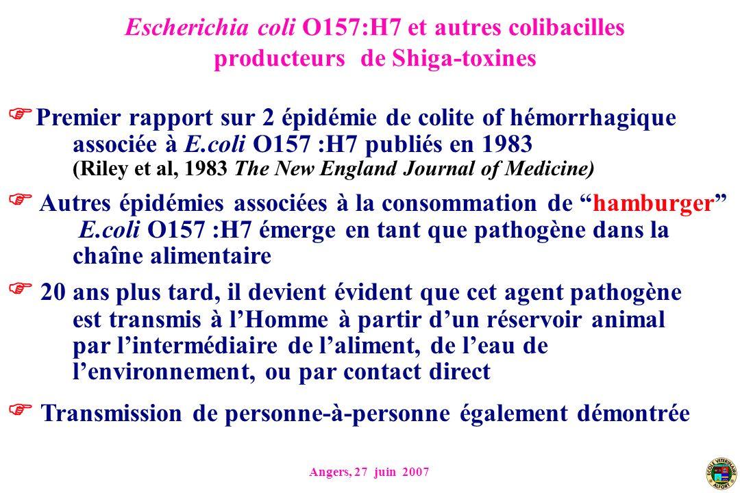 Premier rapport sur 2 épidémie de colite of hémorrhagique