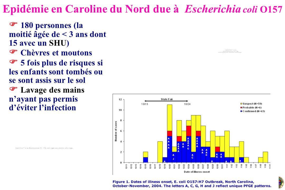 Epidémie en Caroline du Nord due à Escherichia coli O157