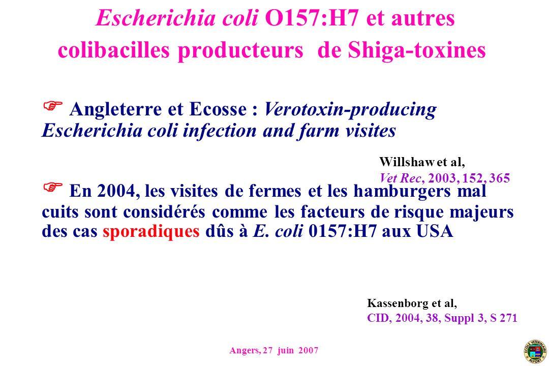 Escherichia coli O157:H7 et autres colibacilles producteurs de Shiga-toxines