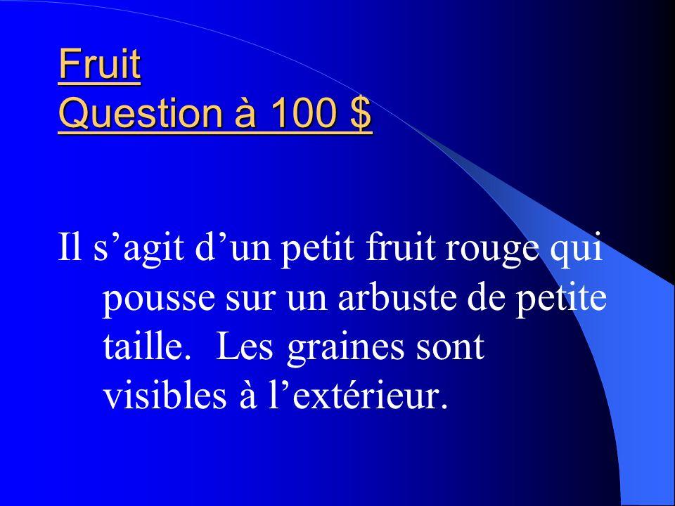 Fruit Question à 100 $ Il s'agit d'un petit fruit rouge qui pousse sur un arbuste de petite taille.