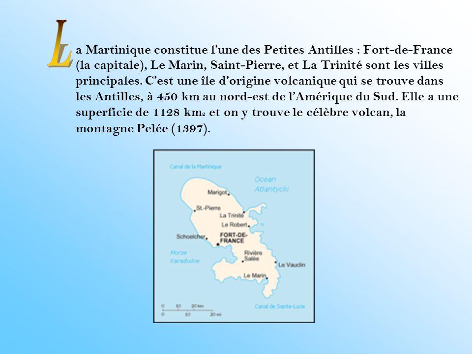 a Martinique constitue l'une des Petites Antilles : Fort-de-France (la capitale), Le Marin, Saint-Pierre, et La Trinité sont les villes principales. C'est une île d'origine volcanique qui se trouve dans les Antilles, à 450 km au nord-est de l'Amérique du Sud. Elle a une superficie de 1128 km2 et on y trouve le célèbre volcan, la montagne Pelée (1397).