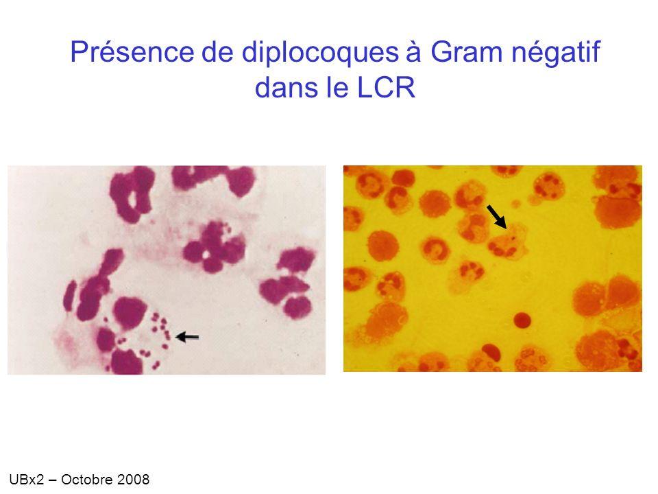 Présence de diplocoques à Gram négatif dans le LCR