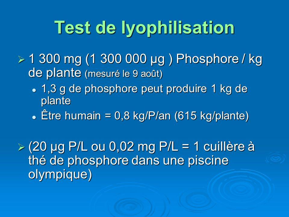 Test de lyophilisation