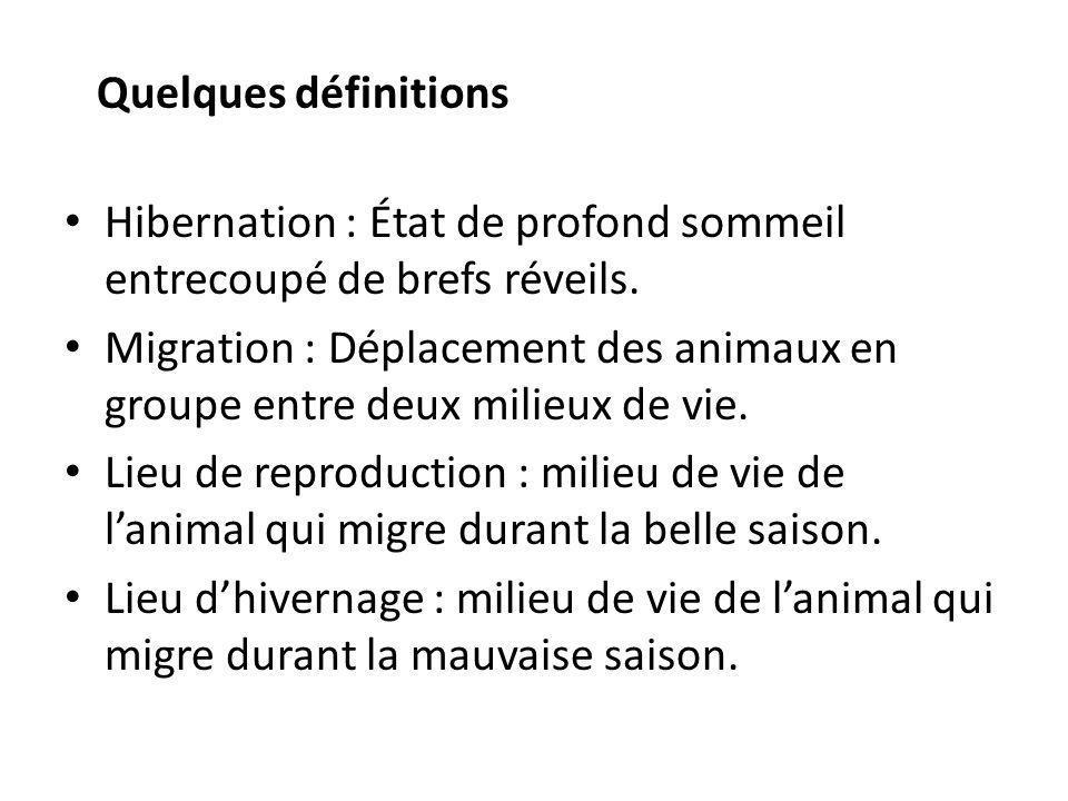 Quelques définitions Hibernation : État de profond sommeil entrecoupé de brefs réveils.