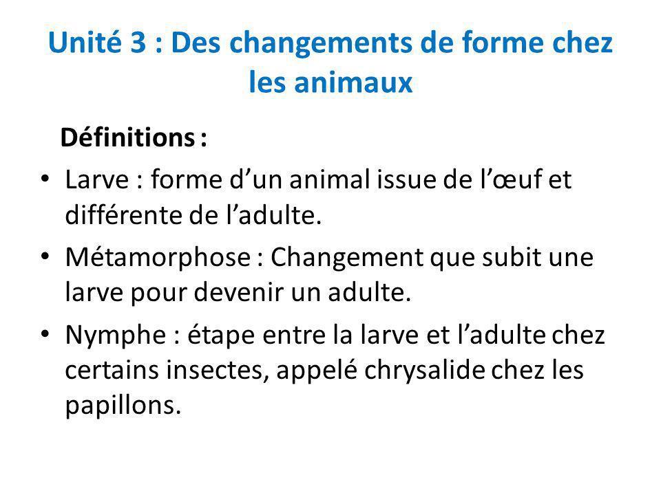 Unité 3 : Des changements de forme chez les animaux