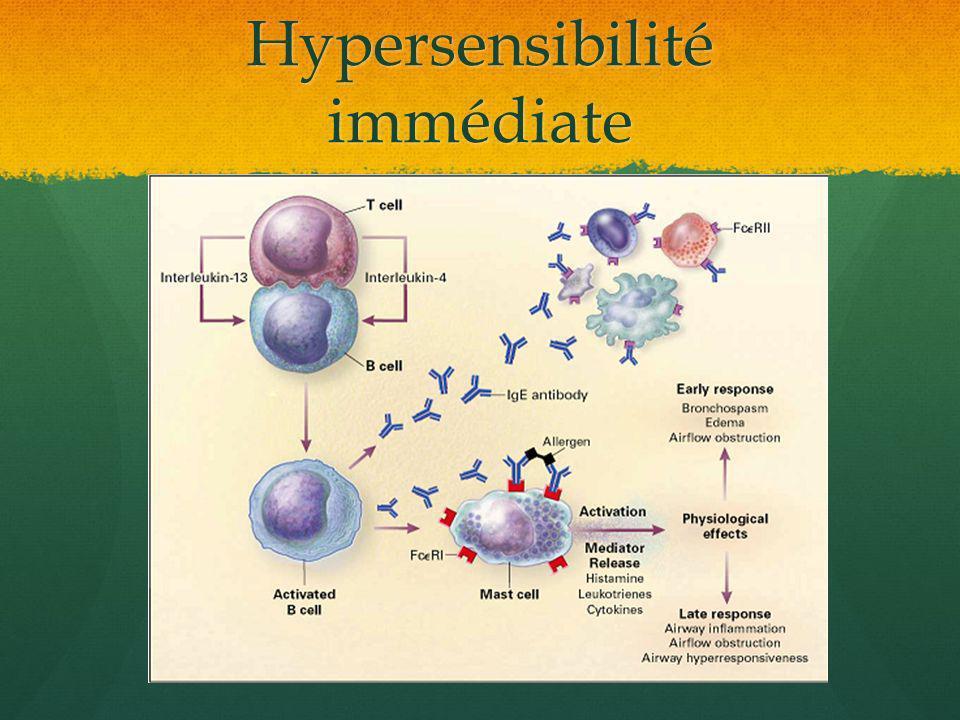 Hypersensibilité immédiate