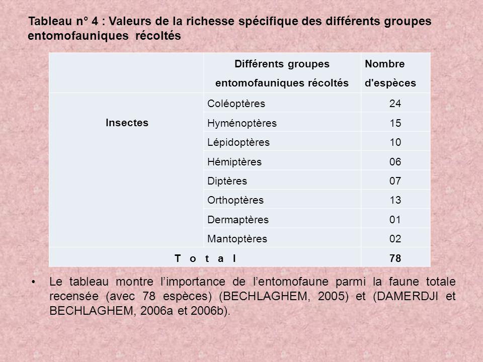 Différents groupes entomofauniques récoltés
