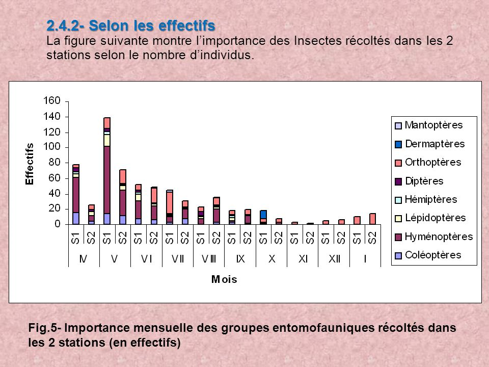 2.4.2- Selon les effectifs La figure suivante montre l'importance des Insectes récoltés dans les 2 stations selon le nombre d'individus.