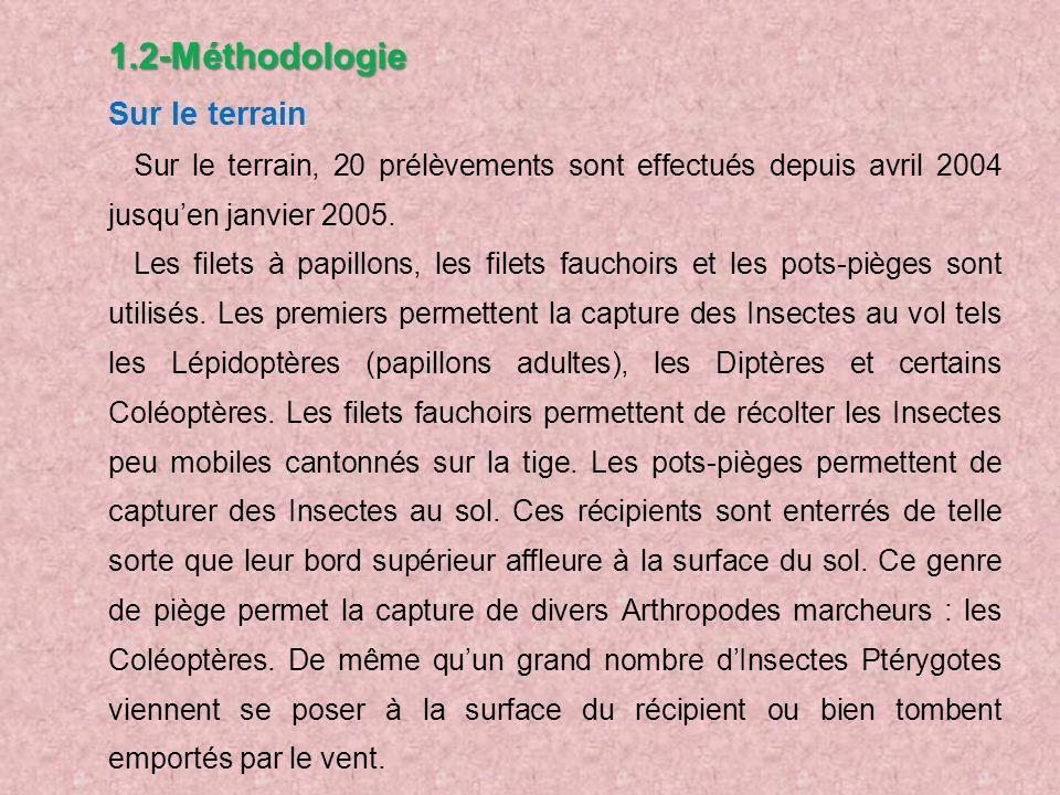 1.2-Méthodologie Sur le terrain. Sur le terrain, 20 prélèvements sont effectués depuis avril 2004 jusqu'en janvier 2005.