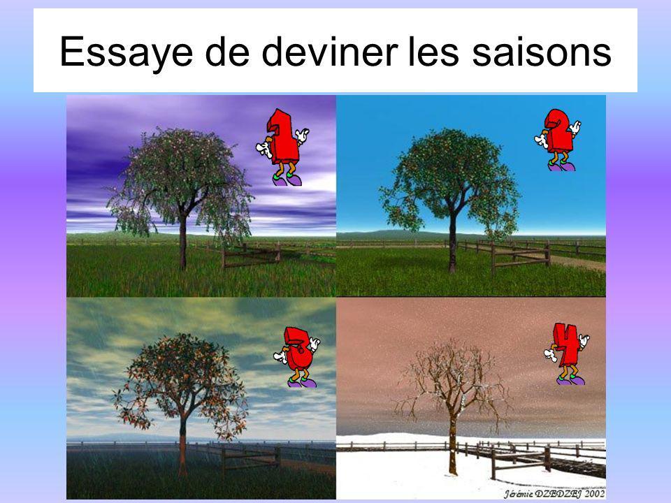 Essaye de deviner les saisons