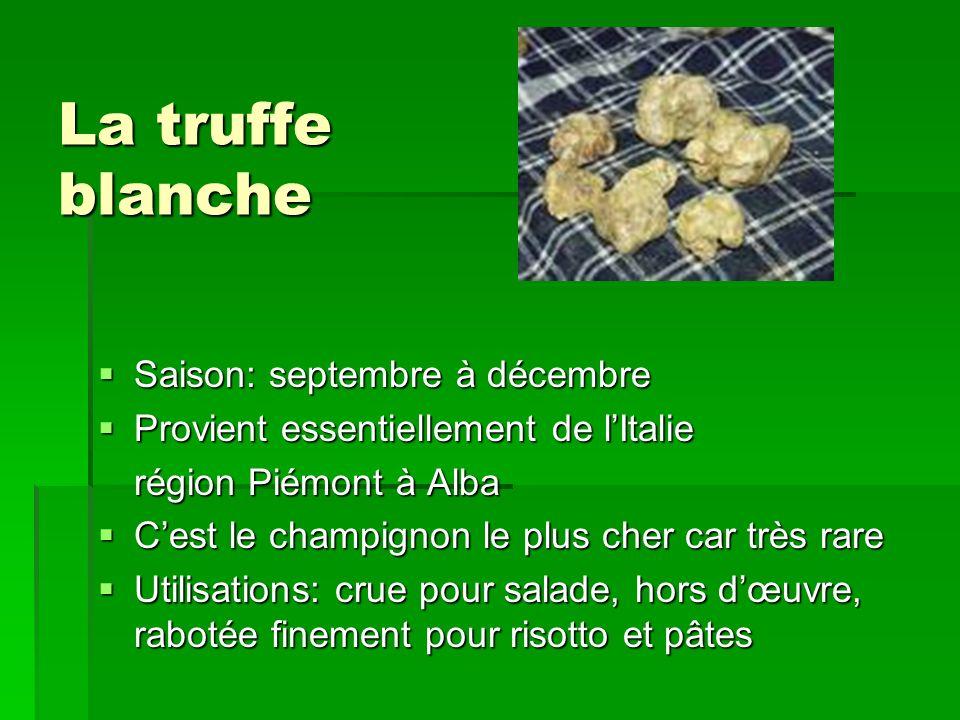 La truffe blanche Saison: septembre à décembre