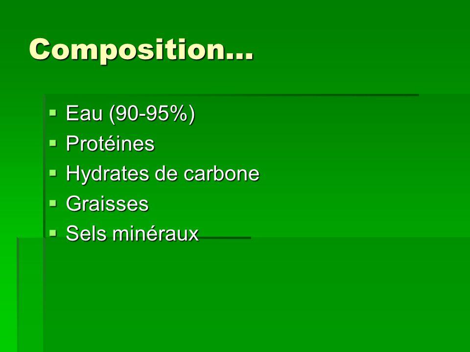 Composition… Eau (90-95%) Protéines Hydrates de carbone Graisses