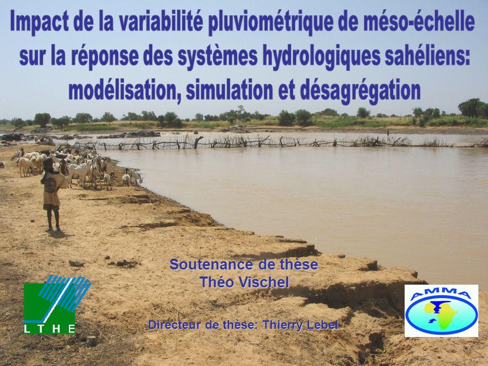 Impact de la variabilité pluviométrique de méso-échelle
