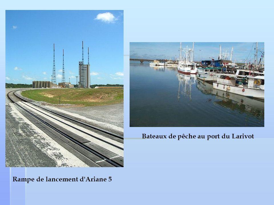 Bateaux de pêche au port du Larivot