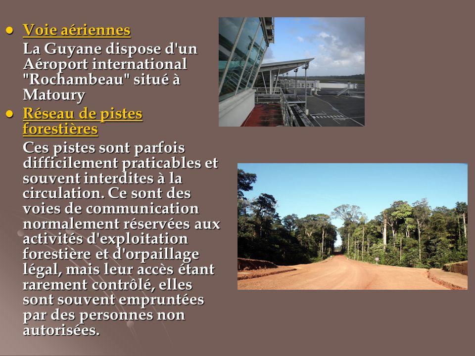 Voie aériennes La Guyane dispose d un Aéroport international Rochambeau situé à Matoury. Réseau de pistes forestières.