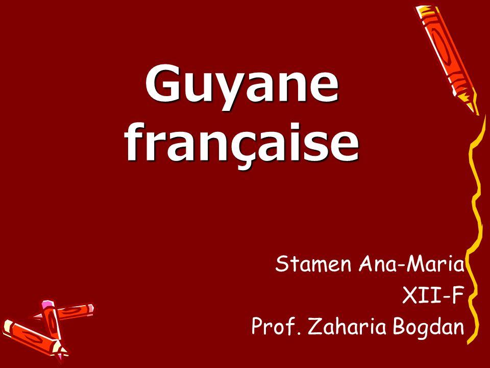 Guyane française Stamen Ana-Maria XII-F Prof. Zaharia Bogdan