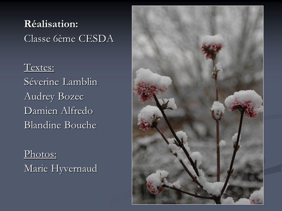 Réalisation: Classe 6ème CESDA. Textes: Séverine Lamblin. Audrey Bozec. Damien Alfredo. Blandine Bouche.