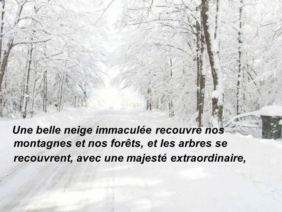 Une belle neige immaculée recouvre nos montagnes et nos forêts, et les arbres se recouvrent, avec une majesté extraordinaire,