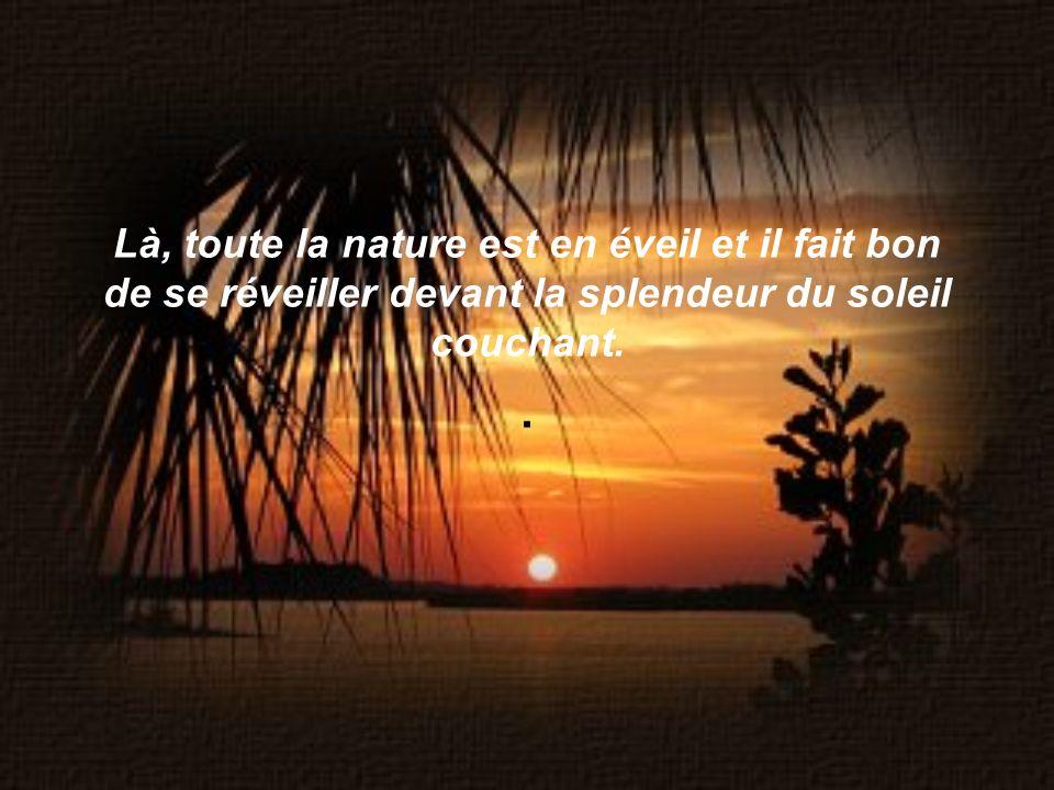 Là, toute la nature est en éveil et il fait bon de se réveiller devant la splendeur du soleil couchant.