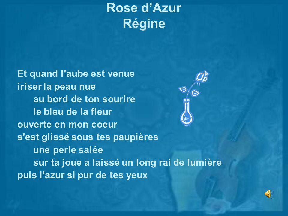 Rose d'Azur Régine Et quand l aube est venue iriser la peau nue