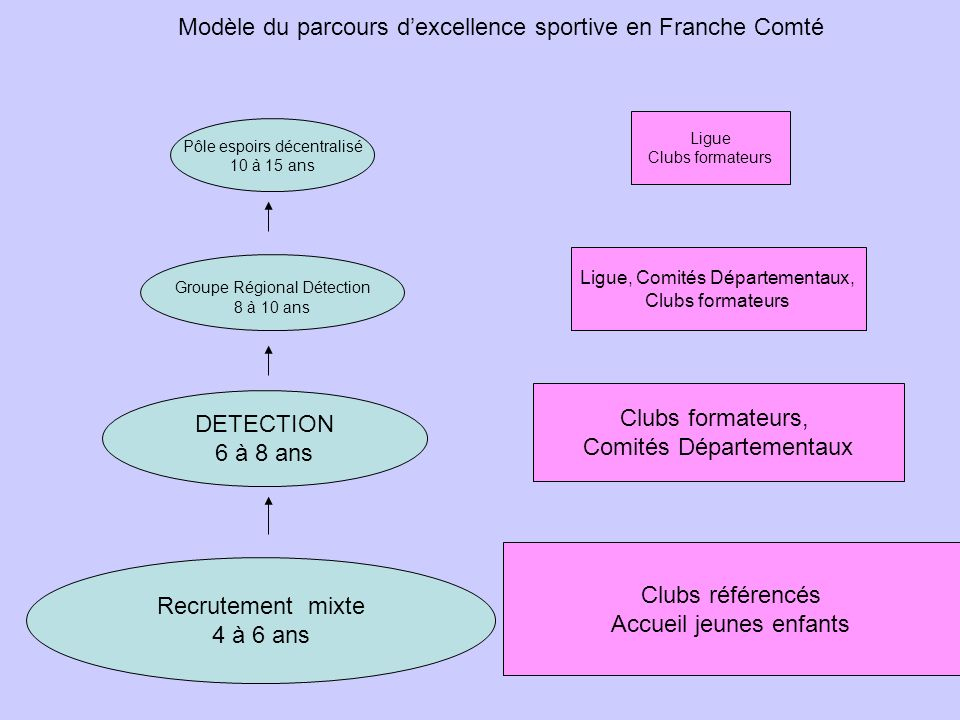 Modèle du parcours d'excellence sportive en Franche Comté