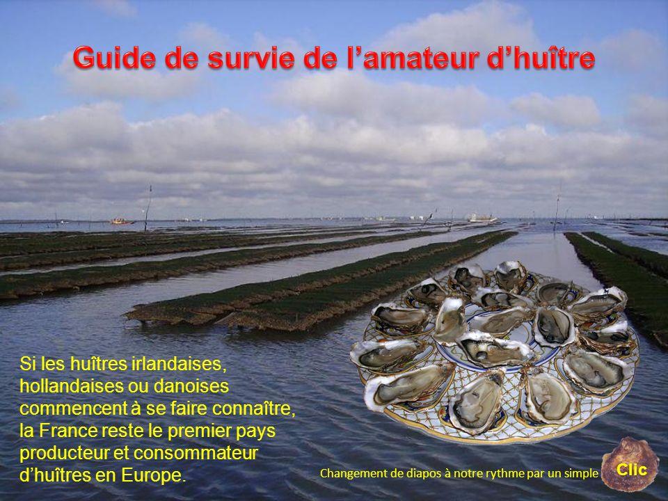 Guide de survie de l'amateur d'huître