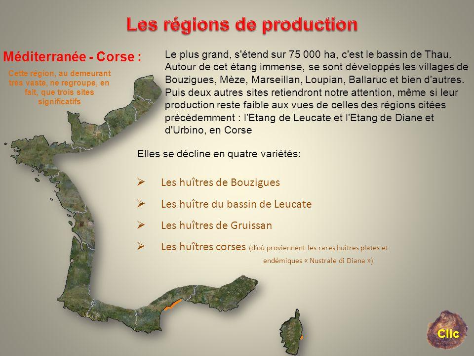 Les régions de production