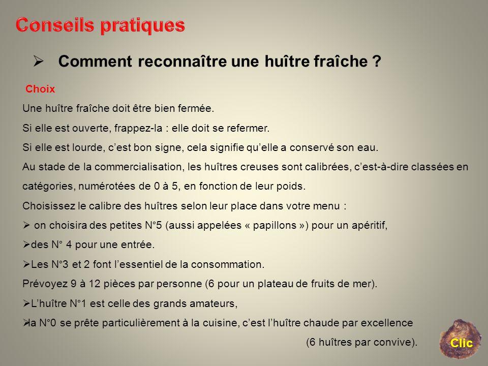 Conseils pratiques Comment reconnaître une huître fraîche Clic Choix