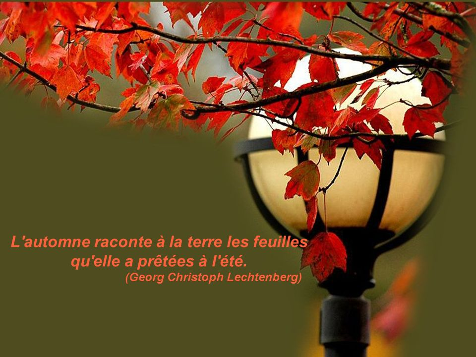 L automne raconte à la terre les feuilles qu elle a prêtées à l été.