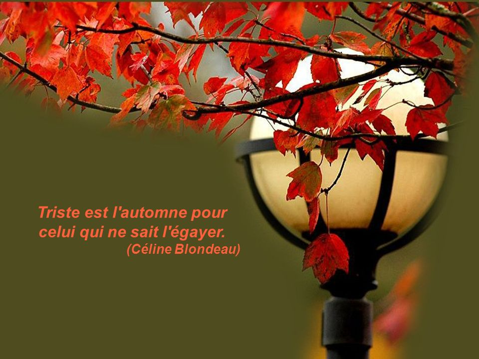 Triste est l automne pour celui qui ne sait l égayer.