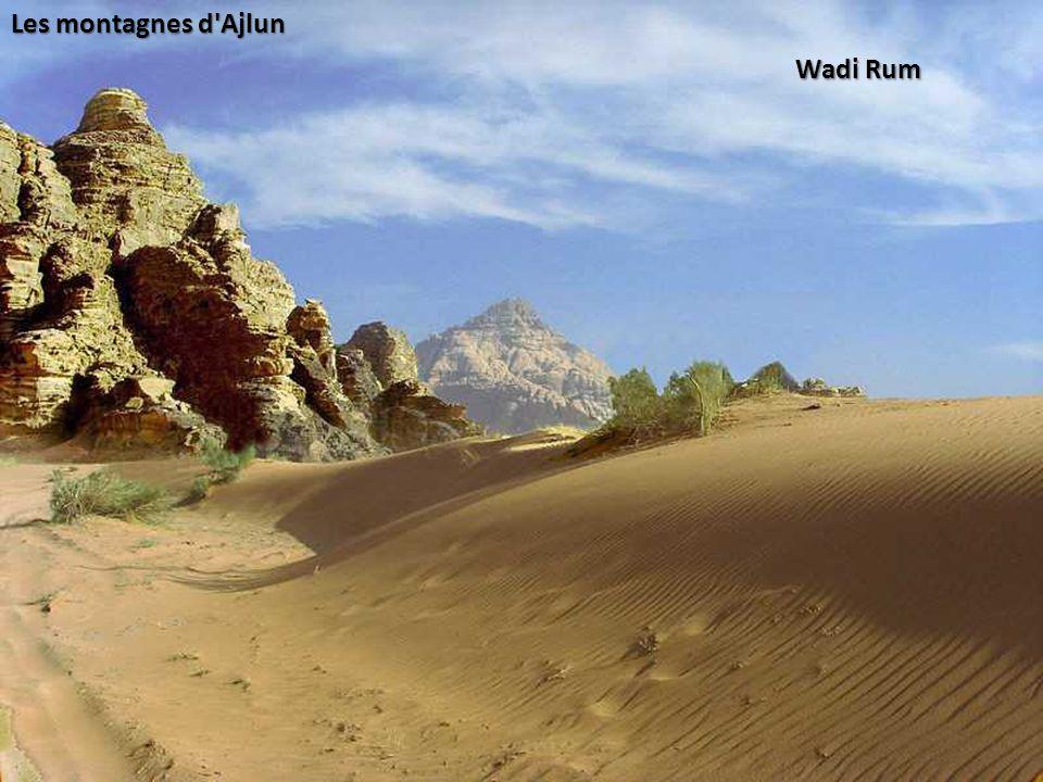 Les montagnes d Ajlun Wadi Rum