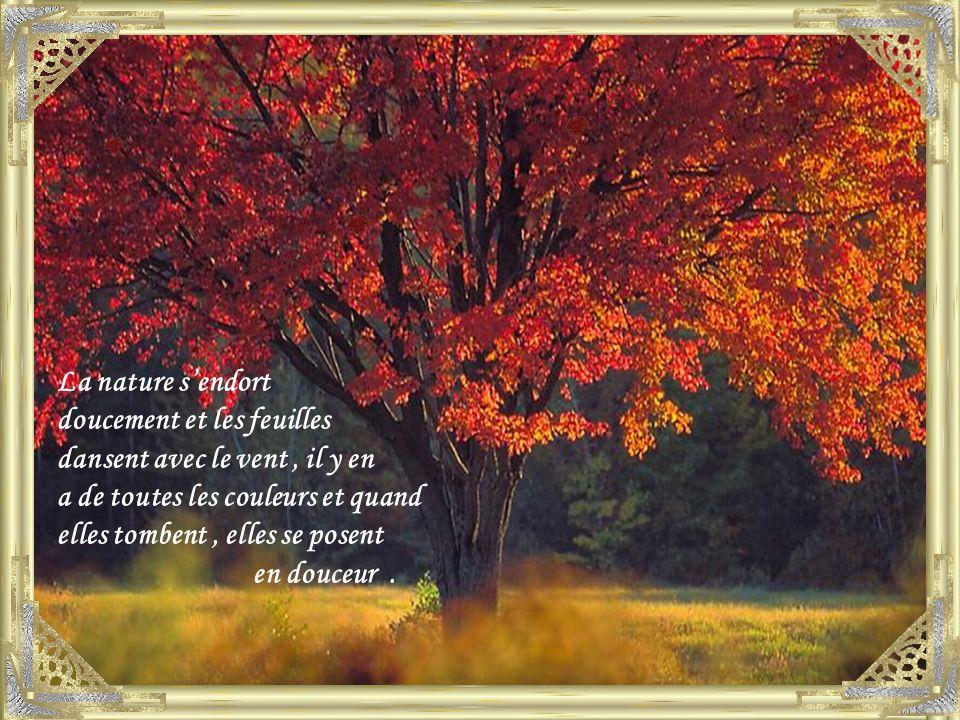 La nature s'endort doucement et les feuilles. dansent avec le vent , il y en. a de toutes les couleurs et quand.