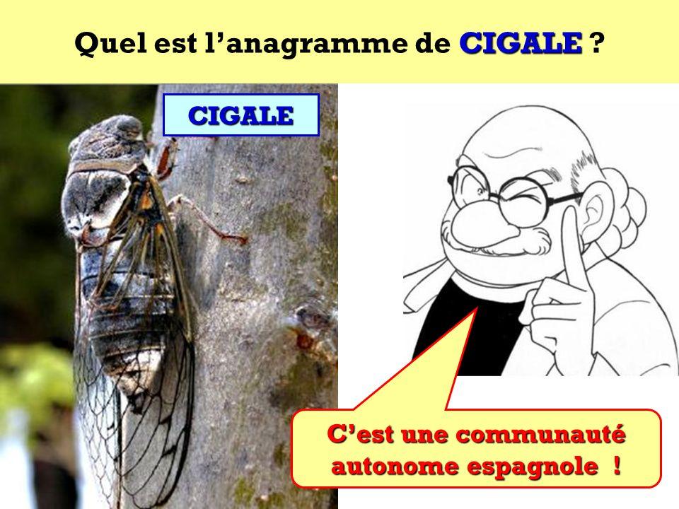 Quel est l'anagramme de CIGALE