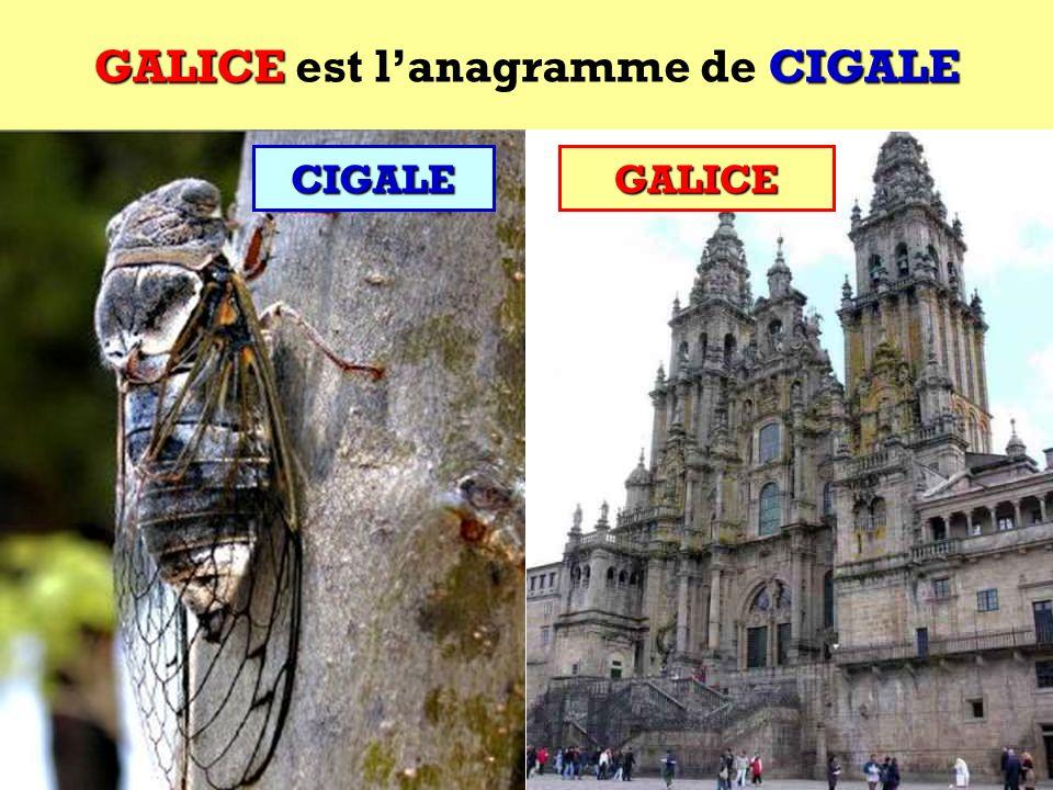 GALICE est l'anagramme de CIGALE