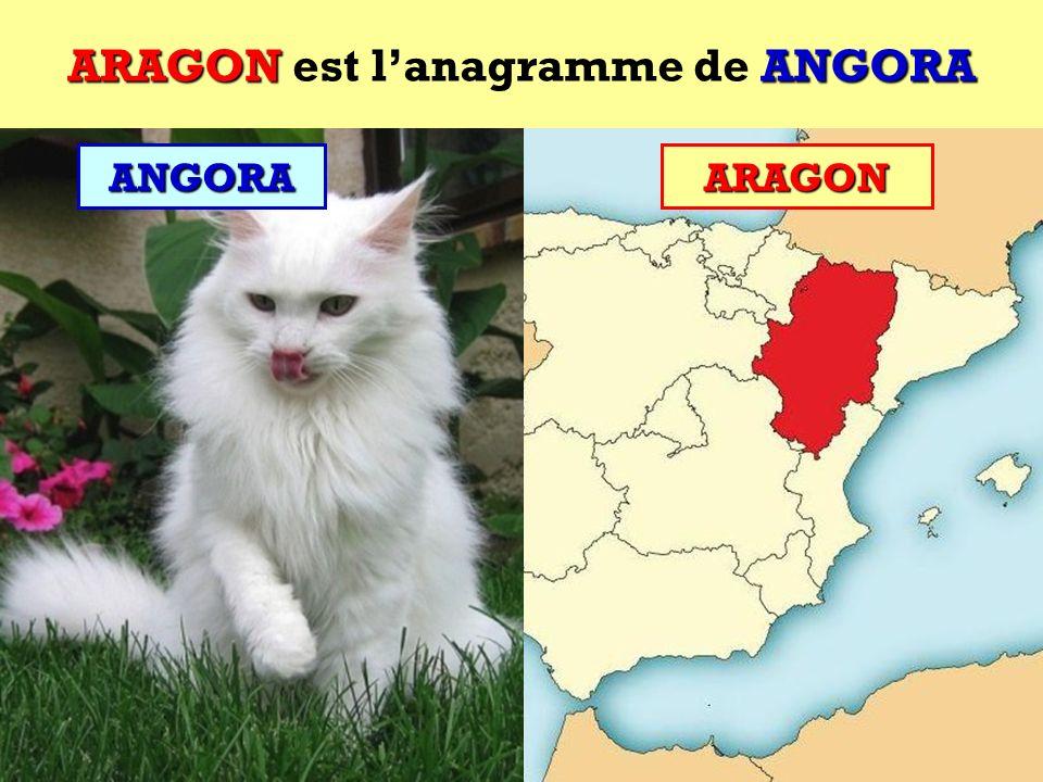 ARAGON est l'anagramme de ANGORA