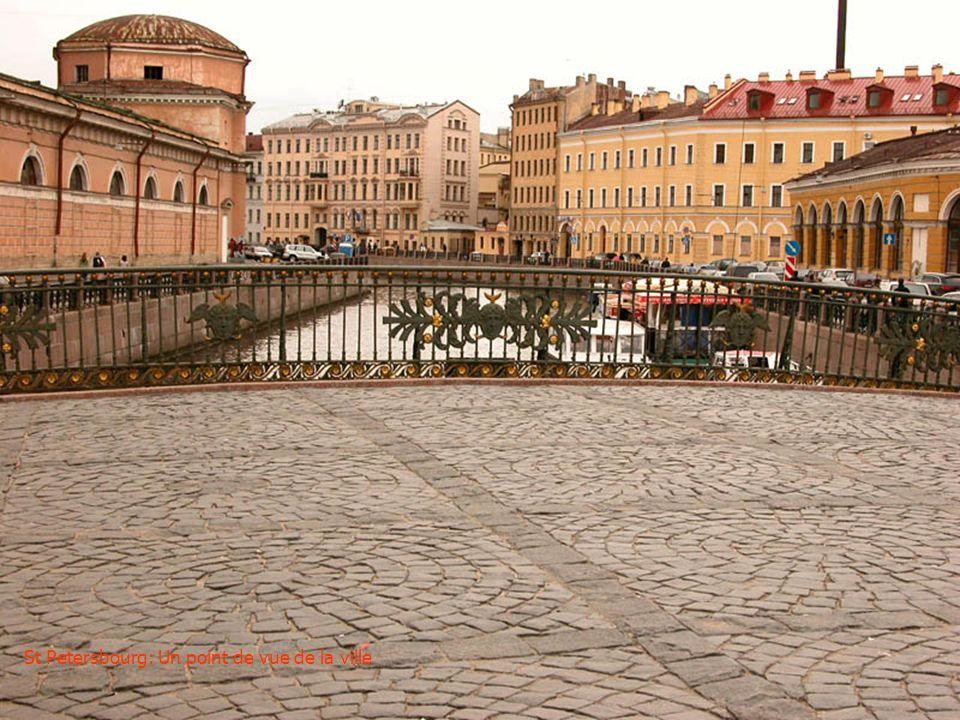 St Petersbourg: Un point de vue de la ville