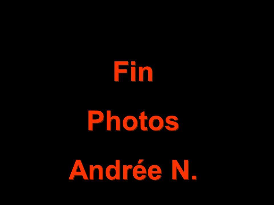 Fin Photos Andrée N.