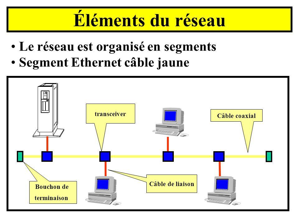 Éléments du réseau Le réseau est organisé en segments