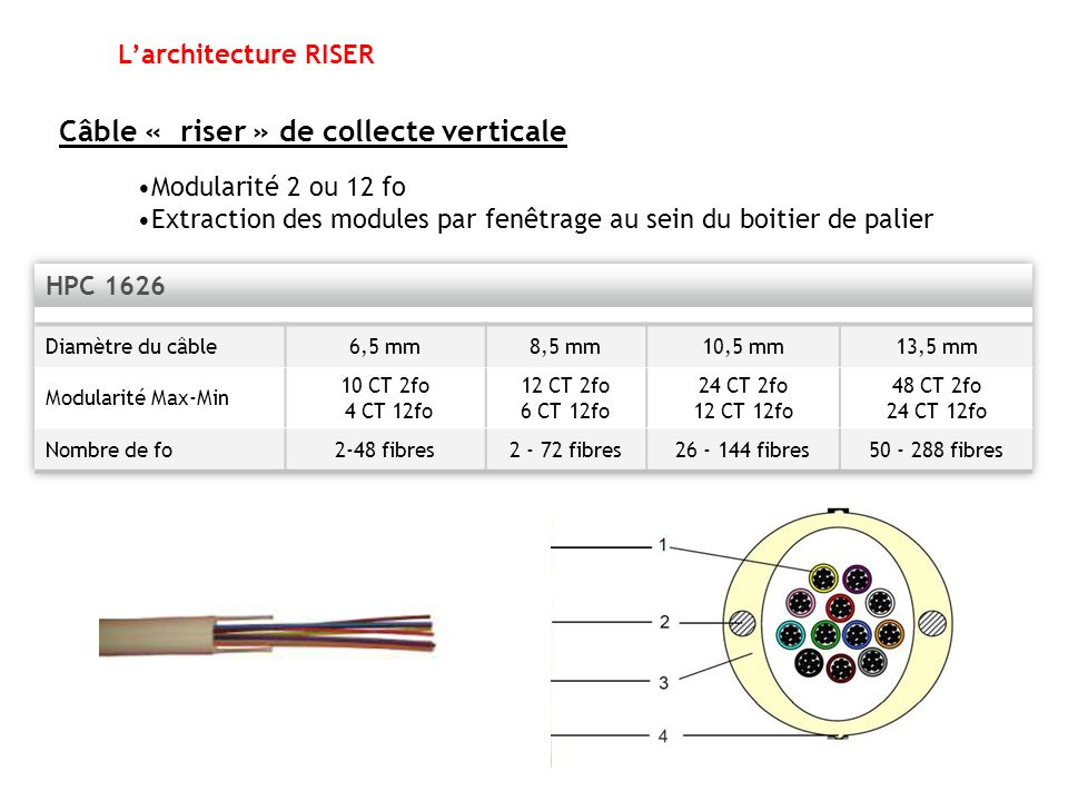 Câble « riser » de collecte verticale