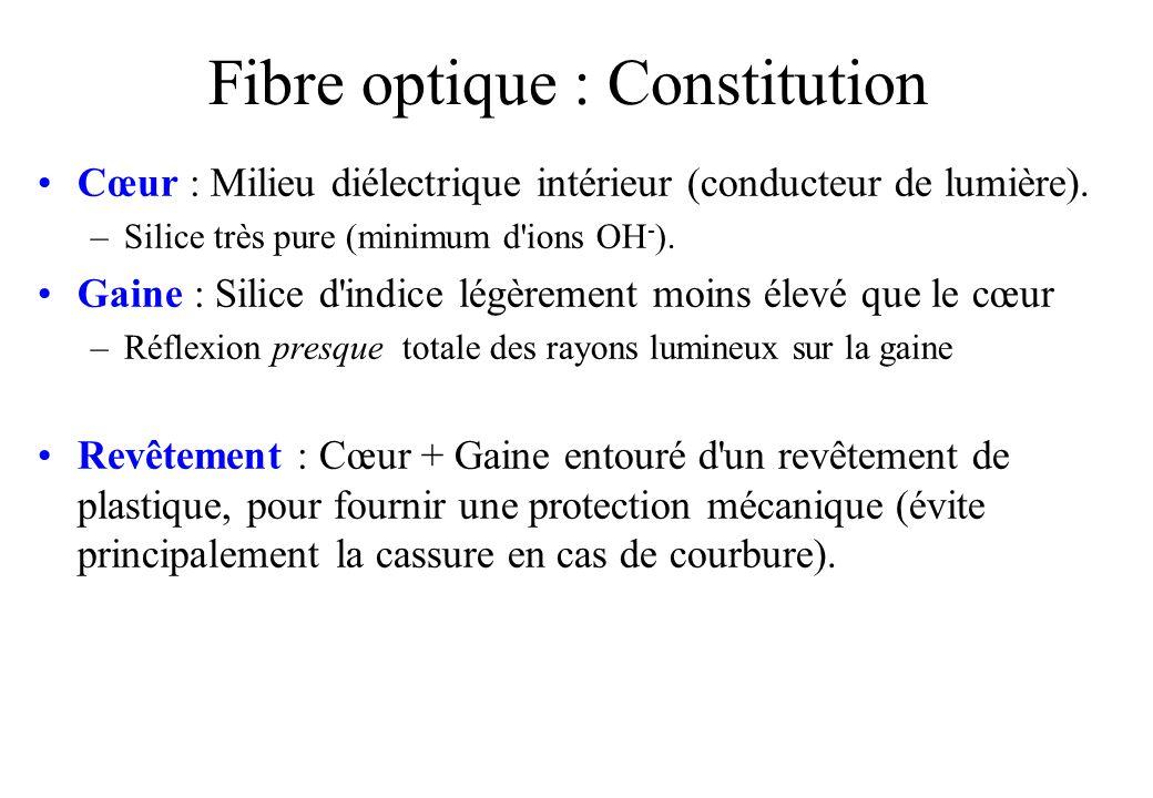Fibre optique : Constitution