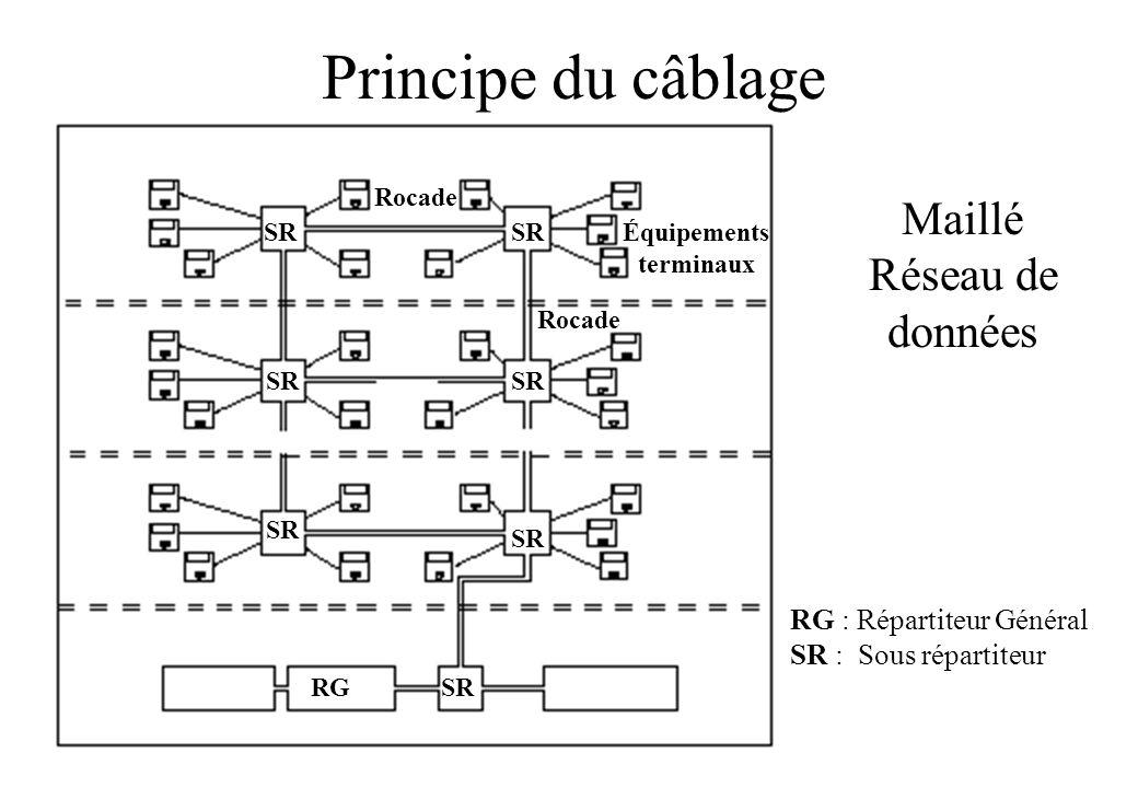 Principe du câblage Maillé Réseau de données RG : Répartiteur Général