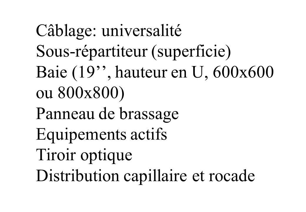 Câblage: universalité Sous-répartiteur (superficie) Baie (19'', hauteur en U, 600x600 ou 800x800) Panneau de brassage Equipements actifs Tiroir optique Distribution capillaire et rocade