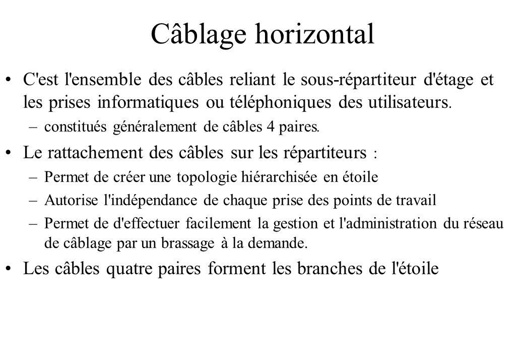 Câblage horizontal C est l ensemble des câbles reliant le sous-répartiteur d étage et les prises informatiques ou téléphoniques des utilisateurs.