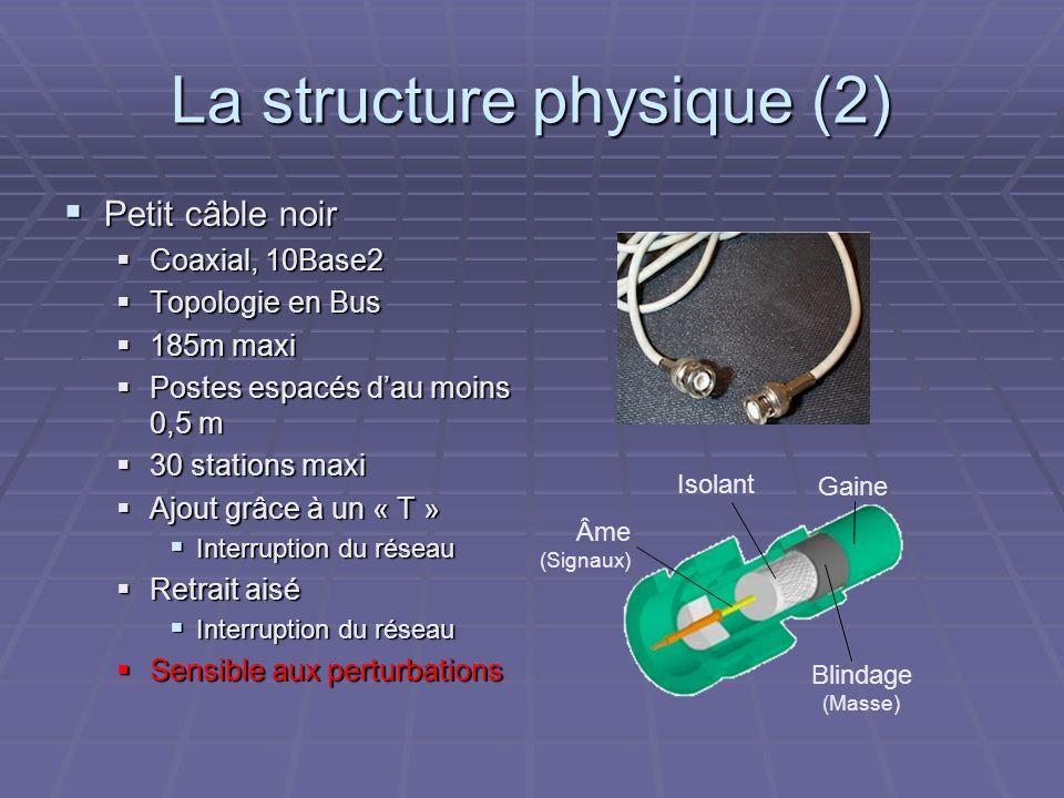 La structure physique (2)