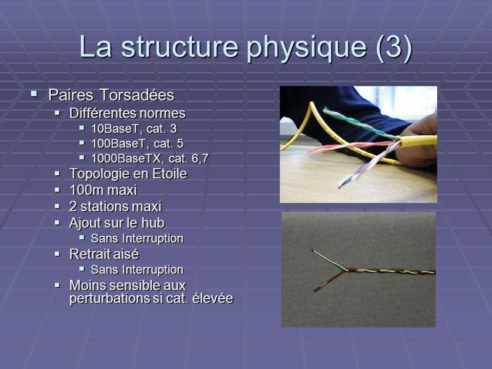 La structure physique (3)