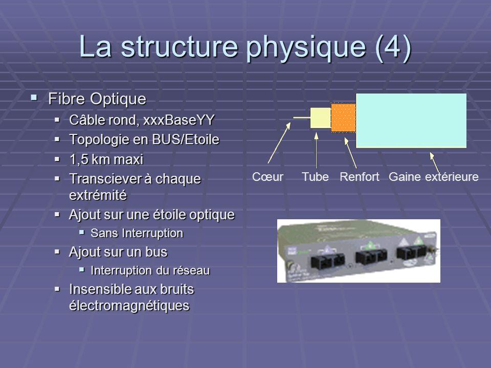 La structure physique (4)