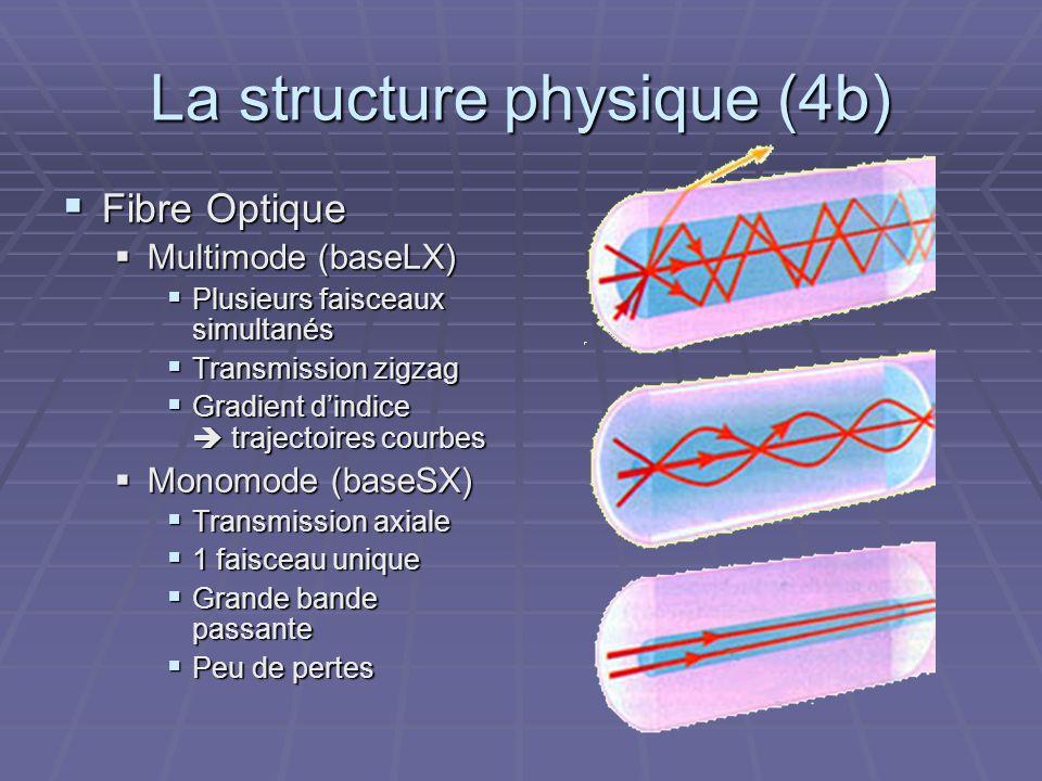 La structure physique (4b)